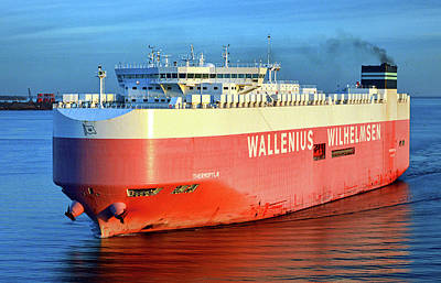 Poster featuring the photograph Wallenius Wilhelmsen Thermopylae 9702443 On The Patapsco River by Bill Swartwout Fine Art Photography