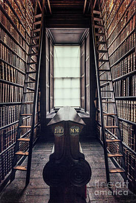 Walls Of Books Poster by Evelina Kremsdorf