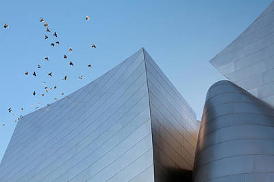 Walt Disney Concert Hall Los Angeles California Architecture Abstract Poster