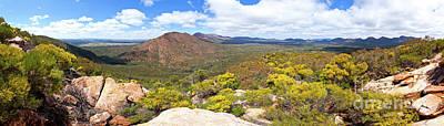 Wangara Hill Flinders Ranges South Australia Poster by Bill Robinson