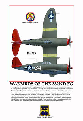 Warbirds Of The 332nd Fg Poster