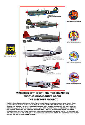 Warbirds Of The 99th Fighter Squadron And 332nd Fighter Group   Tuskegee Project Poster by Jerry Taliaferro