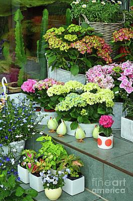 Warnemunde Flower Shop Poster by Eva Kaufman