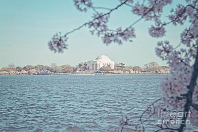 Washington Dc In Spring Poster