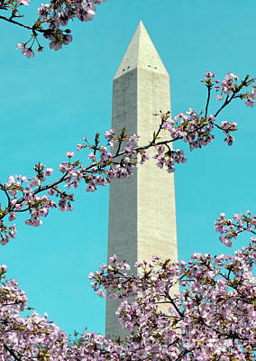 Washington D.c. In Springtime 2 Poster by J Jaiam