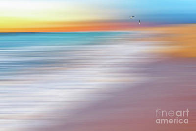 Water Abstraction II With Gulls By Kaye Menner Poster