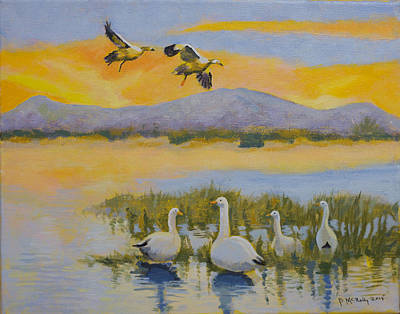 Water Fowl, Sutter Buttes Poster