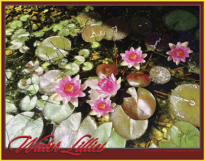 Water Lillies Poster by Ellie Darlene Guillot