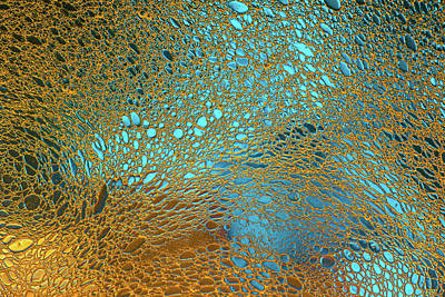 Water Reef Abstract Poster