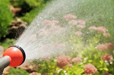Water Splashes Poster