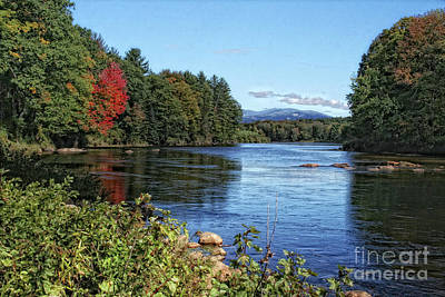 Poster featuring the photograph Water View In New Hampshire by Gina Cormier