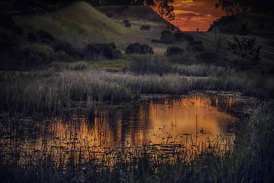 Waterbird Preserve Sunrise Poster