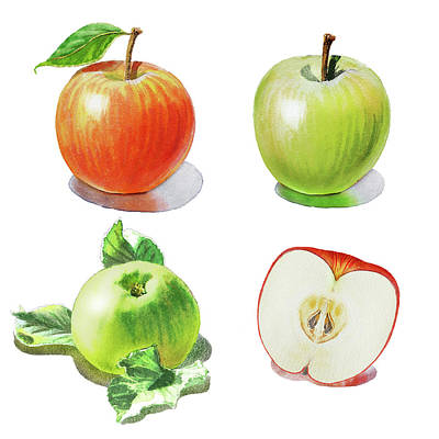 Watercolor Apples Illustration Poster