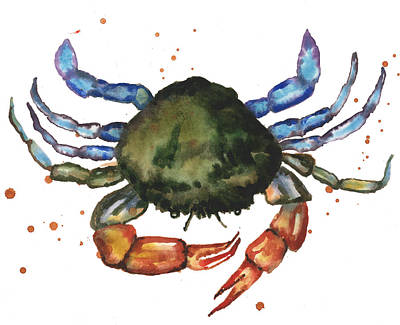 Watercolor Crab Painting Poster by Alison Fennell