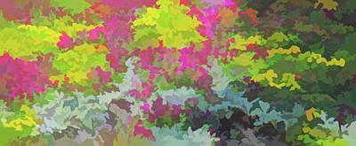 Watercolor Garden Variety Poster