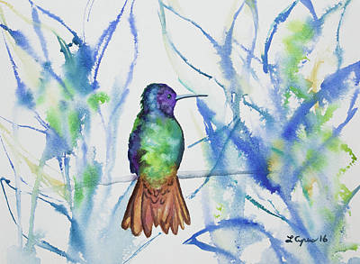 Watercolor - Golden-tailed Sapphire Poster