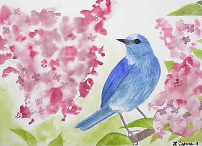 Watercolor - Mountain Bluebird Poster