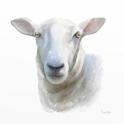 Poster featuring the painting Watercolor Sheep by Ivana Westin