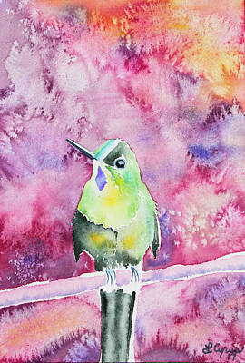 Watercolor - Violet-tailed Sylph Poster