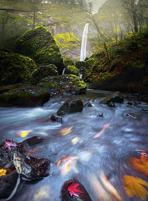 Waterfall And Stream With Fluxing Autumn Leaves Poster