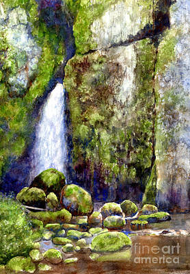 Waterfall With Mossy Rocks Poster by Sharon Freeman