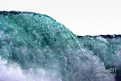 Poster featuring the photograph Wave Rider by Dana DiPasquale
