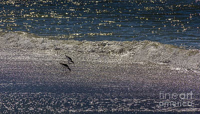 Waves And Sparkling Sand Poster by Marvin Spates