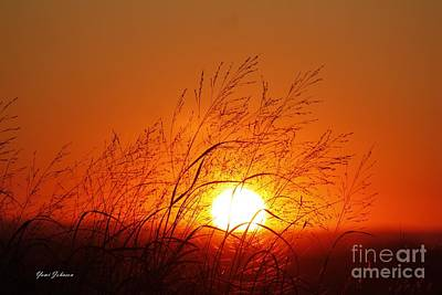 Waving Sun Poster
