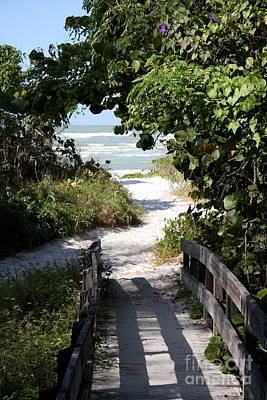 Way To The Beach Poster by Christiane Schulze Art And Photography