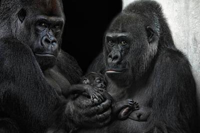 We Are Family Poster by Joachim G Pinkawa