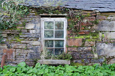 Weather Beaten Window On Donegal Cottage Poster by Bill Cannon