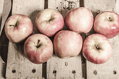 Weathered Fruits Poster