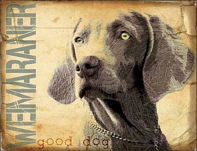 Weimaraner Poster by Wendy Presseisen