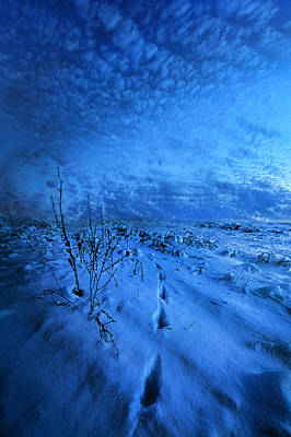 Well Before The Dawn Poster by Phil Koch
