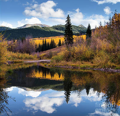 Poster featuring the photograph West Elk Range Reflection by The Forests Edge Photography - Diane Sandoval