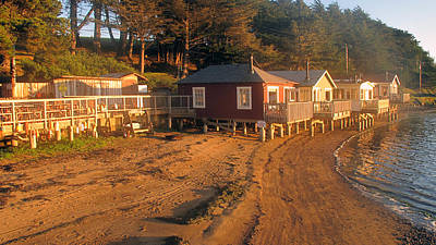 Poster featuring the photograph West Marin Nick's Cove Cottages by Dianne Levy