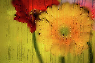 Wet Glass Flowers Poster