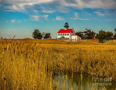 Poster featuring the photograph Wetlands At East Point Light by Nick Zelinsky