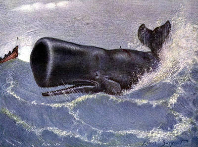 Whaling For Sperm Whale 20th Century Poster