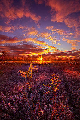 What Forever Means Poster by Phil Koch