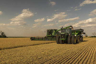 Wheat Harvest Jd Poster by Chris Harris