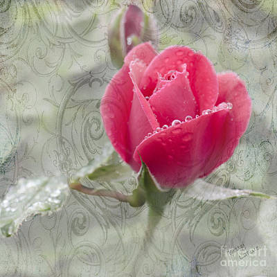 When The Dew Is On The Rose Poster by Betty LaRue