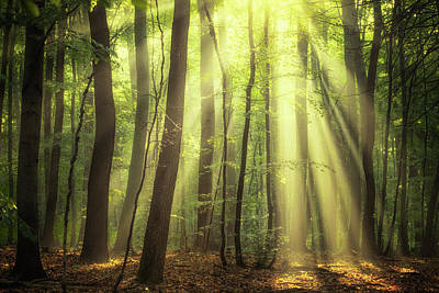 When The Sun Touch Your Heart Poster by Janek Sedlar