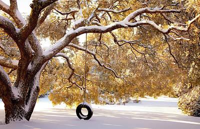 When Winter Blooms Poster by Karen Wiles