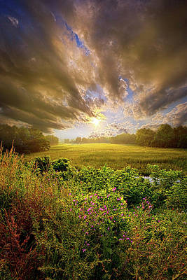 Where My Feet Pass Poster by Phil Koch
