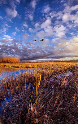 Wherever You Go Becomes A Part Of You Poster by Phil Koch