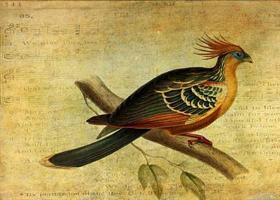 Whirring Pheasant Springs Poster
