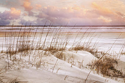 Poster featuring the photograph Whispers In The Dunes by Debra and Dave Vanderlaan