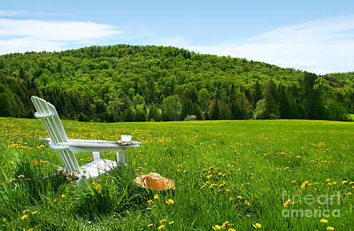 White Adirondack Chair In A Field Of Tall Grass Poster by Sandra Cunningham