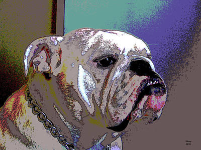White Bulldog Poster by Charles Shoup